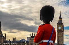 Watching Parliament DSC_6609-Edit.jpg (Sav's Photo Gallery) Tags: bearskin bigben clock clocktower guard guardsman housesofparliament london savash tourism tunic westminster westminsterbridge uk soldier londoneye millenium wheel eye