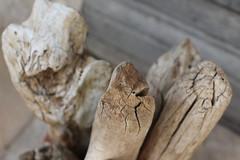 1/3 (bertrand.rimorini) Tags: wood abstract details flou bâtons