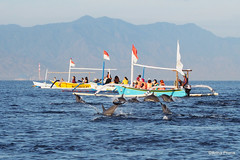 PC130509 (gprana) Tags: bali indonesia boat dolphin olympus lovina m43 singaraja micro43 microfourthirds olympusomdem5 olympusmzuikodigitaled75300mmf4867ii