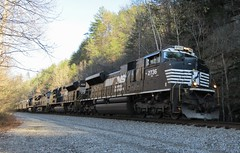 2015-12-08 Obed Wild Scenic River - Norfolk Southern Railroad Engine 2736 about to enter tunnel at Nemo access (Bruce and Letty) Tags: railroad nemo norfolk engine tunnel number southern obed tennesee 2736