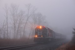 early morning fog (grumpyff) Tags: railroad mist ny misty fog train coach diesel foggy railway commute patterson commuter locomotive passenger ghostly metronorth bombardier brookville 128 towners putnamcounty bl20gh