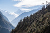 Ganesh Himal (Andrew Luyten) Tags: nepal mountain ganesh himalaya lho westernregion manaslucircuit mountainkingdoms