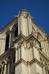Notre-Dame de Paris (Sean Munson) Tags: paris france church europe cathedral gothic steeple unescoworldheritagesite worldheritagesite notredame notredamedeparis notredamecathedral frenchgothic banksoftheseine iledefrance iledelacite