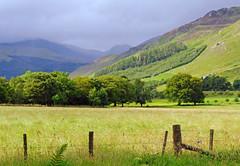 Glen Lyon (eric robb niven) Tags: trees cycling scotland dundee perthshire farmland hills glenlyon ericrobbniven