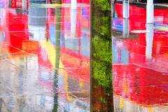 BRY_20130108_IMG_4010_.jpg (stephenbryan825) Tags: trees reflection rain liverpool abstracts wetpavement selects