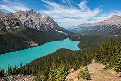 Lake Peyto - Banff NP - Alberta (bart coessens) Tags: canada banff banffnationalpark alberta lake landscape lakepeyto peyto