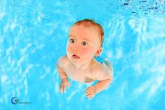 H2OFoto.de Babyschwimmen Unterwasserfotoshooting (Babyschwimmer) Tags: underwater baby child photography adorable pictures babies swimming berlin babyschwimmen unterwasser foto termin anmeldung modelfotografie nixenfotograf meerjungfrauenfoto unterwasserfodelfotografie schwimmkurs fotostudio nirvana brandenburg stadtwerke bderbetriebe unterwassermodelfotografie punktgenau fokus unterwasserfotografie schwimmkurse workshops schnupperschwimmen portrait dresden gera grimma liegau solms dessau meerane freital pirna arnstadt suhl bad lausick schwedt meisen freiberg leipzig chemnitz altenburg oschatz taucha eilenburg templin giesen smmerda dsseldorf hessen bayern mnchen schmlln langenleuba borna frankfurt am main