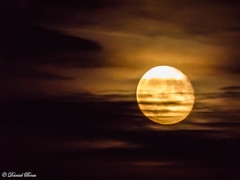 Moon of september (Daniel Boca) Tags: moon moonlight orangemoon light backlight september evening night nightphotography nightscape sky cloud clouds nature outdoor astrophotography colour colours colorful color colors