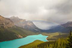 IMG_7083 (Yani Ioannou) Tags: alberta canada banff rainbow lake peyto