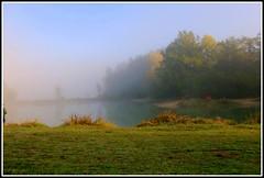 Au bord du lac en automne (Les photos de LN) Tags: nature automne lac brume brouillard couleurs teintes coloris lumire reflets