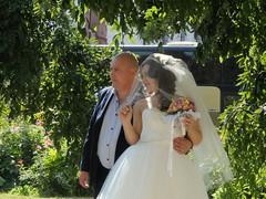 Осенняя свадьба (GrusiaKot) Tags: ucraina ukraine україна украина travelling autumn wedding couple odessa smiling love lovely amore matrimonio