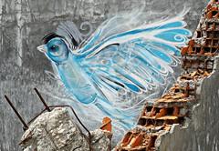Coimbra 2016 - Sociedade de Porcelanas 06 (Markus Lske) Tags: portugal coimbra sociedadedeporcelanas art arte kunst graffiti graffito bild streetart urbanart urban street strase lueske lske