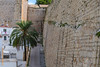 Ibiza (Edi Bähler) Tags: architektur bauwerk fassade gasse gebäude ibiza mauer palme spanien architecture building facade frontage structure nikond5 28300mmf3556