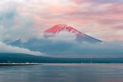 Morning sun dyes Fuji (shinichiro*) Tags: åé½çé¡ å±±æ¢¨ç æ¥æ¬ jp 20161028ds40050 2016 crazyshin nikond4s afsnikkor2470mmf28ged yamanashi japan 山中湖 lakeyamanaka autumn october fiji sunrise 30094860553 201612gettyuploadesp 627593620
