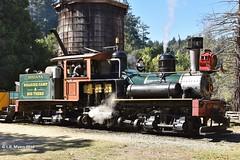 160925_20_felton (lmyers83) Tags: steam shay
