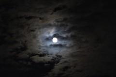 the window... (***toile filante***) Tags: moon fullmoon night nacht mond vollmond sky clouds himmel wolken dster dark dunkel emotions light licht hell bright autumn herbst nature natur