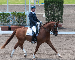161023_Aust_D_Champs_Sun_Med_4.3_6693.jpg (FranzVenhaus) Tags: athletes dressage australia siec equestrian riders horses performance event competition nsw sydney aus