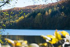 DSC_0242 (Pter_Szab) Tags: mtra matra hungary nature autumn colours mountains galyateto galyatet forest hiking nationalpark landscape