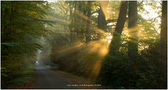 """Ray of light"", Netherlands (CvK Photography) Tags: autumn autumncolors canon color cvk enschede europe fall fog forrest landscape mist nature netherlands outdoor overijssel sun sunray sunrise twente nederland nl"