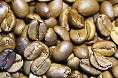 Monsooned coffee beans (NeuroNeuroNeuro) Tags: macro sony canon 100mm a6300 coffee bean monsoon caffeine roasted