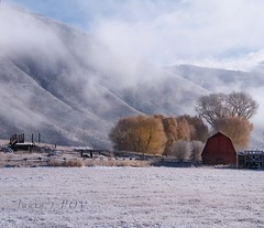 just a DUSTING (laura's Point of View) Tags: ranch farm field pasture barn fence autumn winter snow cold seasons beautiful beauty mountain butte jacksonhole jackson wyoming west western unitedstates nature wander destination tetons rockymountains lauraspov lauraspointofview sky clouds trees explore