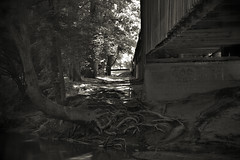God Is Love (Mike McCall) Tags: copyright2016mikemccall photograph image photo georgia usa meriwethercounty redoak creek covered bridge 1840s antebellum imlac horaceking freedslave africanamerican history