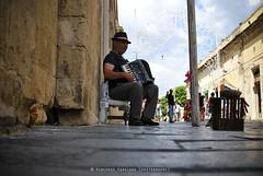 organista (3zeguet) Tags: noto musica sicilia siracusa povert povero organetto elemosina