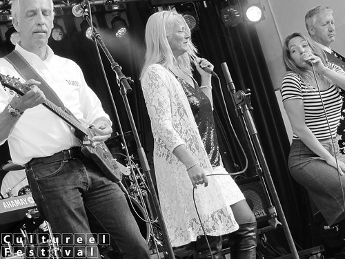 Cultureel Festival Baarn 2015 - The D.A.M.