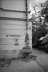 Sovetskaya (Alexander Oleynik) Tags: street bw house tree art leaves architecture august number crimea 43