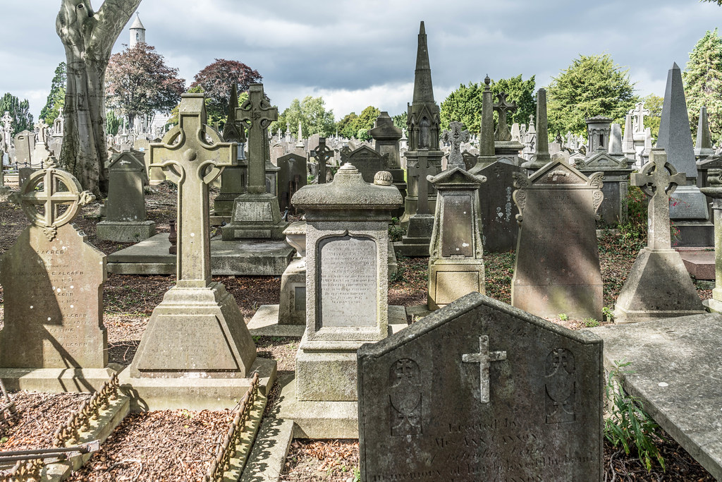 GLASNEVIN CEMETERY [MY FIRST DAY USING THE NEW SONY A7RMkII] REF-107398