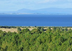 As far as the eye can see..x (lisa@lethen) Tags: black tower forest view hill trail 99 isle moray firth scoland culbin