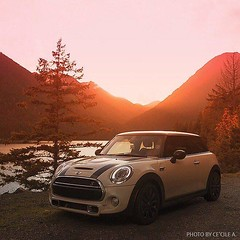 Find a #MINI #Hardtop 2 Door and motor to your happy place with no monthly payments until 2016. Go to bit.ly/ZeroFor15 to view important info and find yours. - photo from miniusa (orlandomini) Tags: from door november 2 usa hardtop happy photo orlando with view place florida no united go mini your 09 cooper yours info motor states find until monthly important clubman payments 2016 2015 countryman paceman miniusa orlandomini 0922am wwwiwantaminicom httpwwwfacebookcompagesp137773706313 bitlyzerofor15 httpswwwfacebookcomorlandominiphotosa10152516145846314107374185013777370631310153283027441314type3 httpsscontentxxfbcdnnethphotosxap1vt1091219627310153283027441314800184704021064126njpgoh5bb25f87f67e7bf099aef3bda72c0effoe56c73f72