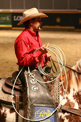 RAWF15 JSteadman 0109 (RoyalPhotographyTeam) Tags: sun royal rodeo 2015 rawf nov08
