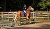Doorn (Steenvoorde Leen - 2.7 ml views) Tags: doorn manegedentoom arreche paarden springen horses jumping hindernis fench sport outdoor manege 2015 halloween happyhalloween horse pferd reiten paard pferde haloween utrechtseheuvelrug cheval