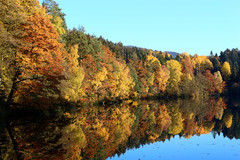 Germany - Höllensteinsee - Reflections (st3000) Tags: autumn trees lake reflection nature canon germany bavaria europe stm 40mm indiansummer bayerischerwald bayrischerwald höllensteinsee eos100d bavarianforst