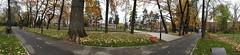 Old square (Torekhan Sarmanov) Tags: park city trees square kazakhstan kz almaty republicsquare boulivard kbtu applecity