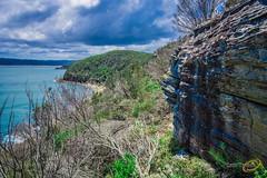 750_8183_low res.jpg (Cath Thuaux) Tags: ocean sea landscape boxhead barrenjoey umina lionisland killcare nov2015