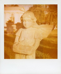 Hollywood Forever Angel (tobysx70) Tags: california santa ca camera toby sculpture film broken cemetery stone angel polaroid photography la los wings boulevard angeles bokeh wing 66 route monica 600 hollywood forever hancock expired slr680 rt blvd rte 0409