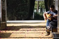 _MVI0198.jpg (Marcos_Vázquez) Tags: parque de sevilla guitarra luisa maría guitarrista afinando
