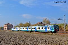 Ale 724 (Umberto Scagliotti) Tags: train treno alessandria trenitalia balzola chivasso leggera xmpr ale724 le724 elettromotrice le884 nikond3100