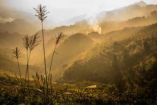 Smoke on the rice terraces