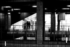 On the Seine reflections (pascalcolin1) Tags: paris13 seine eau water reflection reflets ombre shadows lumire lights photoderue streetview urbanarte noiretblanc blackandwhite photopascalcolin