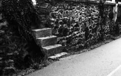 8389.Stairs (Greg.photographie) Tags: nikon nikonfe nikkor 50mm f18 film analog foma fomapan 400 r09 noiretblanc bw blackandwhite stairs escalier