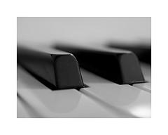 1-keys (Roberto Gramignoli) Tags: blackandwite bw piano pianoforte tasti tastiera musica music jazz keys