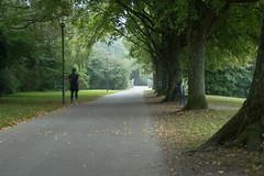 16_09_25_Herbst am Bodensee-20.jpg (werwen01) Tags: morgenstunde jahreszeit friedrichshafen orte bodensee herbst ereignisse ostufer