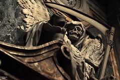 (Pau Pumarola) Tags: ossos huesos os bones knochen calavera crne crani skull schdel tomba tumba grab grave