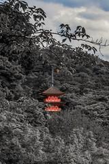 Kiyomizudera Temple (BHF3737) Tags: temple kyoto kiyomizudera surreal