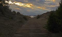 (autobusapedali) Tags: ottobre luce sentiero tuscany iphonegrafia squared sunset