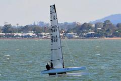 DSC_0249 (LoxPix2) Tags: loxpix queensland australia sailing catamaran trimaran nacra hobie arrow moth 505 maricat humpybongyachtclub humpybash aclass f18 mosquito laser bird spinnaker woodypoint