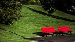 Empty seats. (Jean McLane) Tags: banc parc green red seats bancs